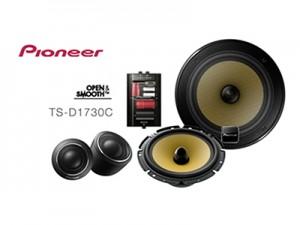 Pioneer TS-D1730C speakers